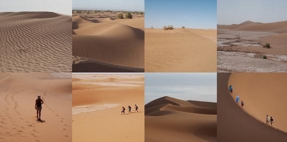 Slide1_desert